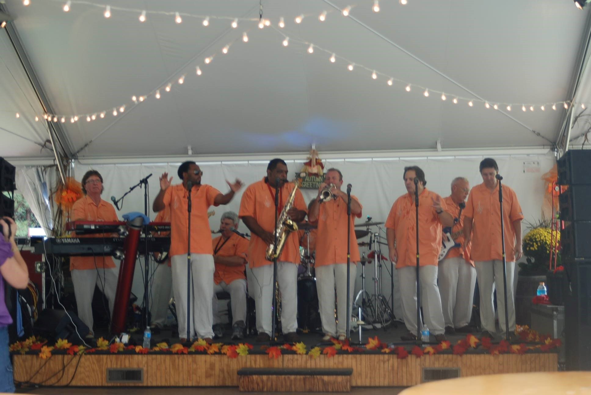 10th Annual Harvest Festival Band BlackWater Rhythm & Blue Band
